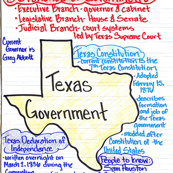 Teaching the Texas Government